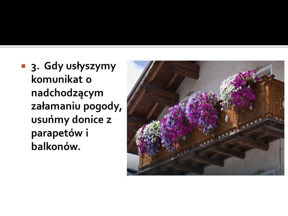  3. Gdy usłyszymy komunikat o nadchodzącym załamaniu pogody, usuńmy donice z parapetów i balkonów.