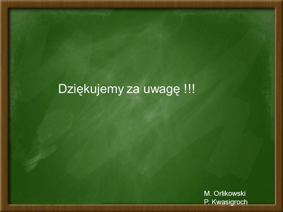 Dziękujemy za uwagę !!! M. Orlikowski P. Kwasigroch