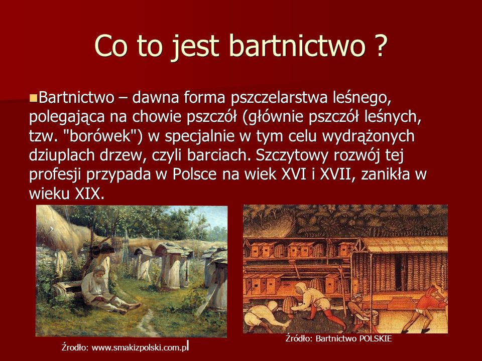 Co to jest bartnictwo .