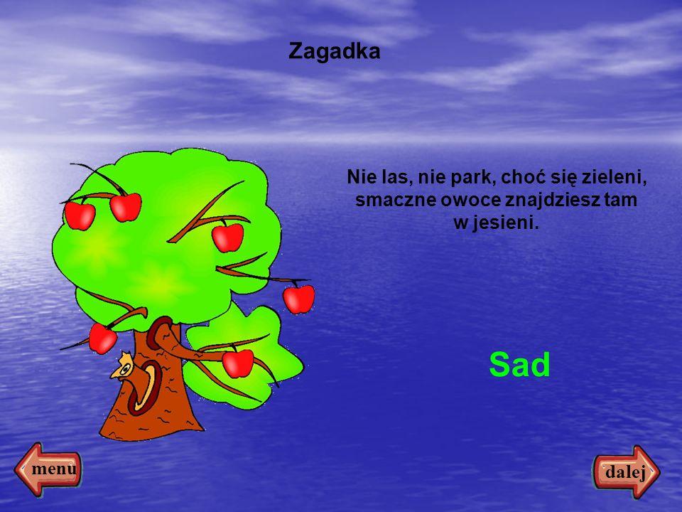 5 Nie las, nie park, choć się zieleni, smaczne owoce znajdziesz tam w jesieni. Sad Zagadka dalej menu