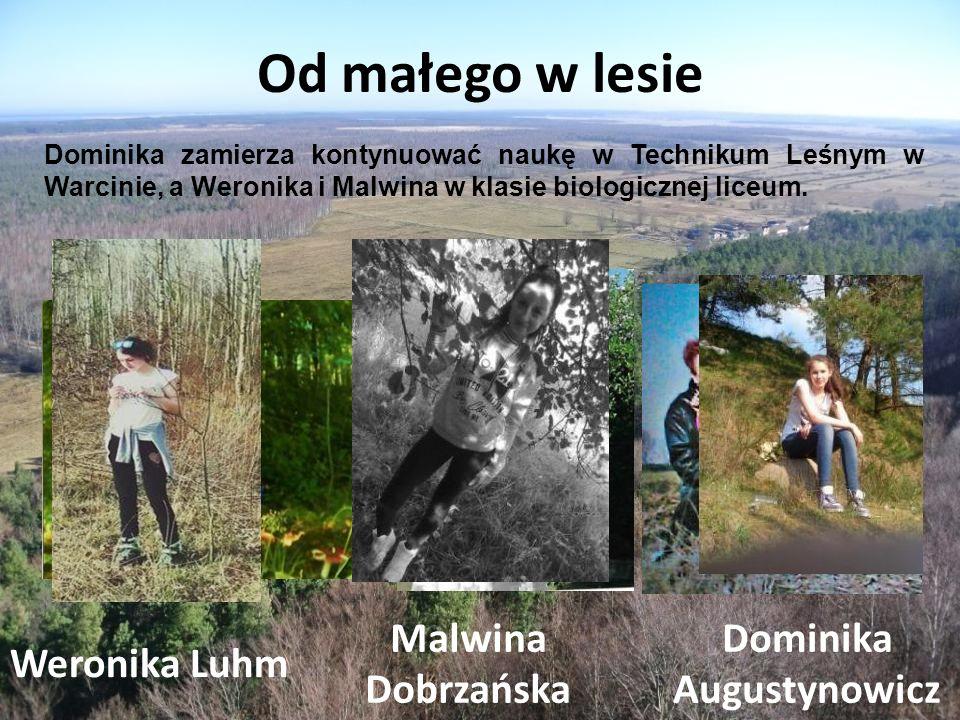 Od małego w lesie Weronika Luhm Malwina Dobrzańska Dominika Augustynowicz Dominika zamierza kontynuować naukę w Technikum Leśnym w Warcinie, a Weronika i Malwina w klasie biologicznej liceum.