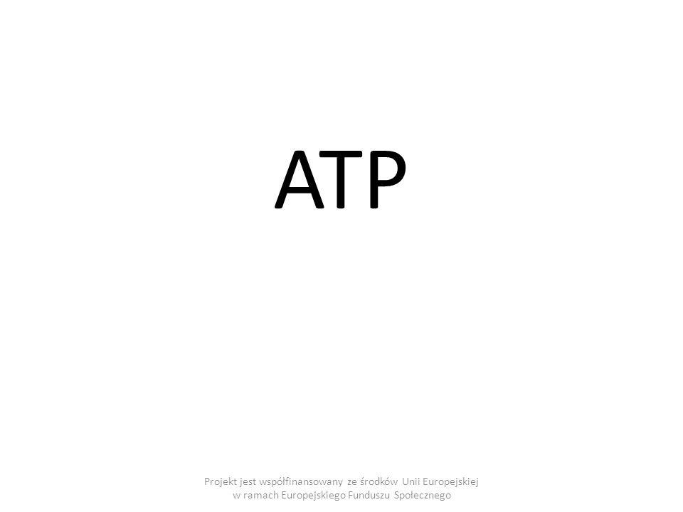 Projekt jest współfinansowany ze środków Unii Europejskiej w ramach Europejskiego Funduszu Społecznego ATP
