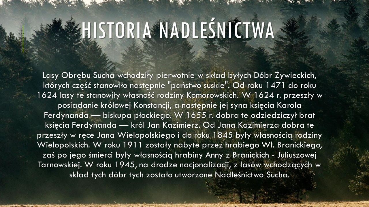 HISTORIA NADLEŚNICTWA Lasy Obrębu Sucha wchodziły pierwotnie w skład byłych Dóbr Żywieckich, których część stanowiło następnie państwo suskie .