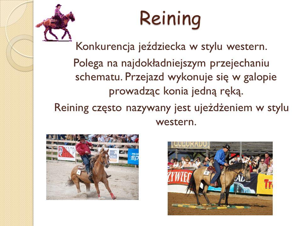 Reining Konkurencja jeździecka w stylu western. Polega na najdokładniejszym przejechaniu schematu.