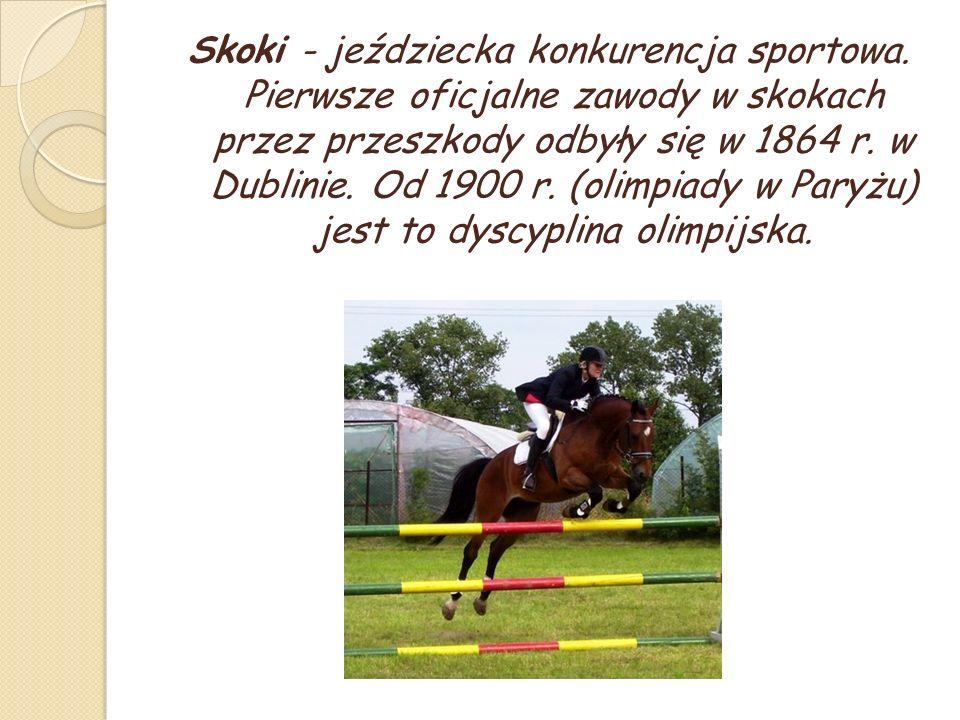 Skoki - jeździecka konkurencja sportowa.