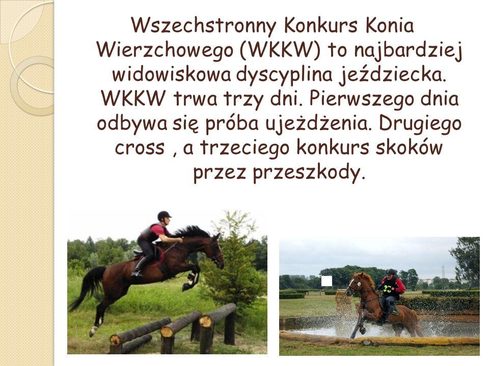 Wszechstronny Konkurs Konia Wierzchowego (WKKW) to najbardziej widowiskowa dyscyplina jeździecka.