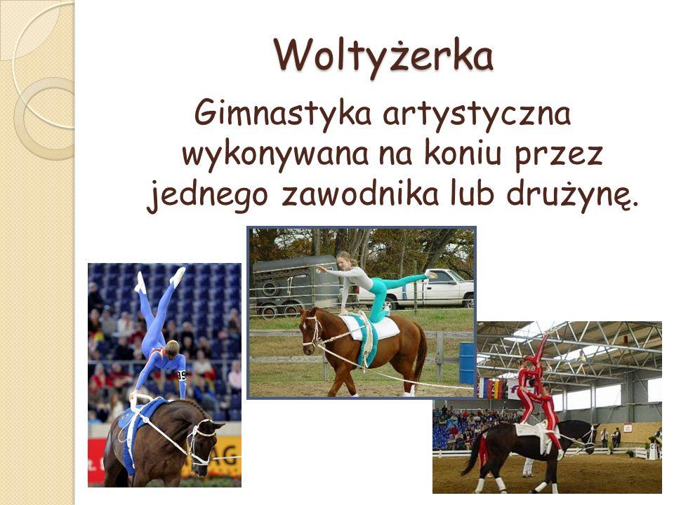 Woltyżerka Gimnastyka artystyczna wykonywana na koniu przez jednego zawodnika lub drużynę.