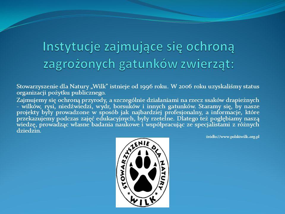 """Stowarzyszenie dla Natury """"Wilk istnieje od 1996 roku."""