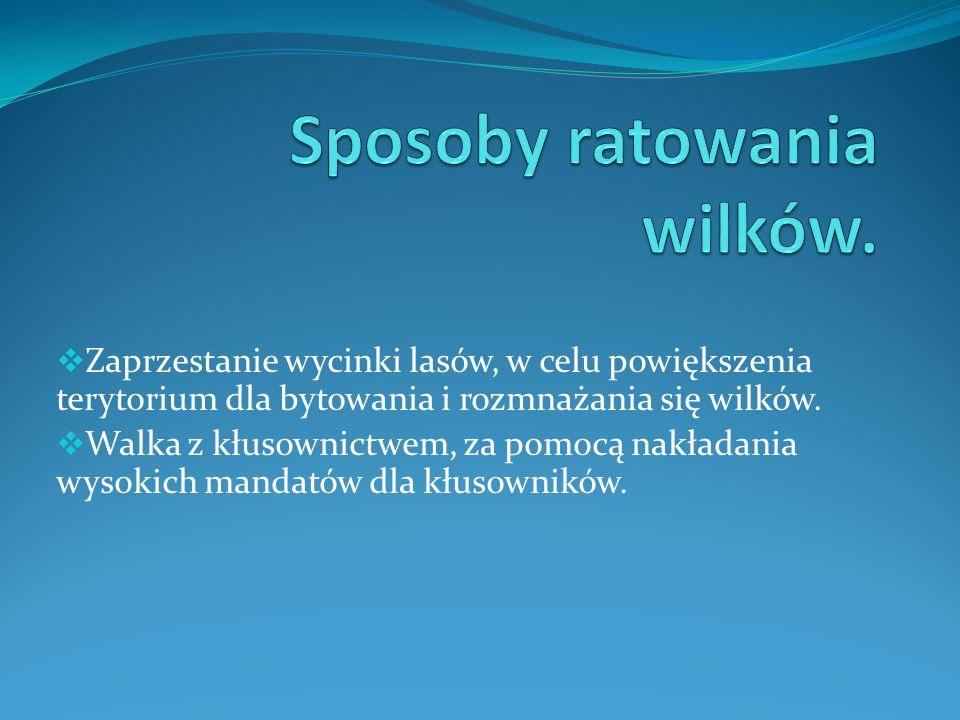 Grafika://www.gazetakaszubska.pl fot. dyby.pl