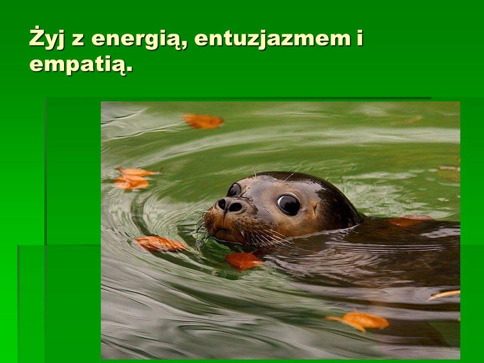 Żyj z energią, entuzjazmem i empatią.