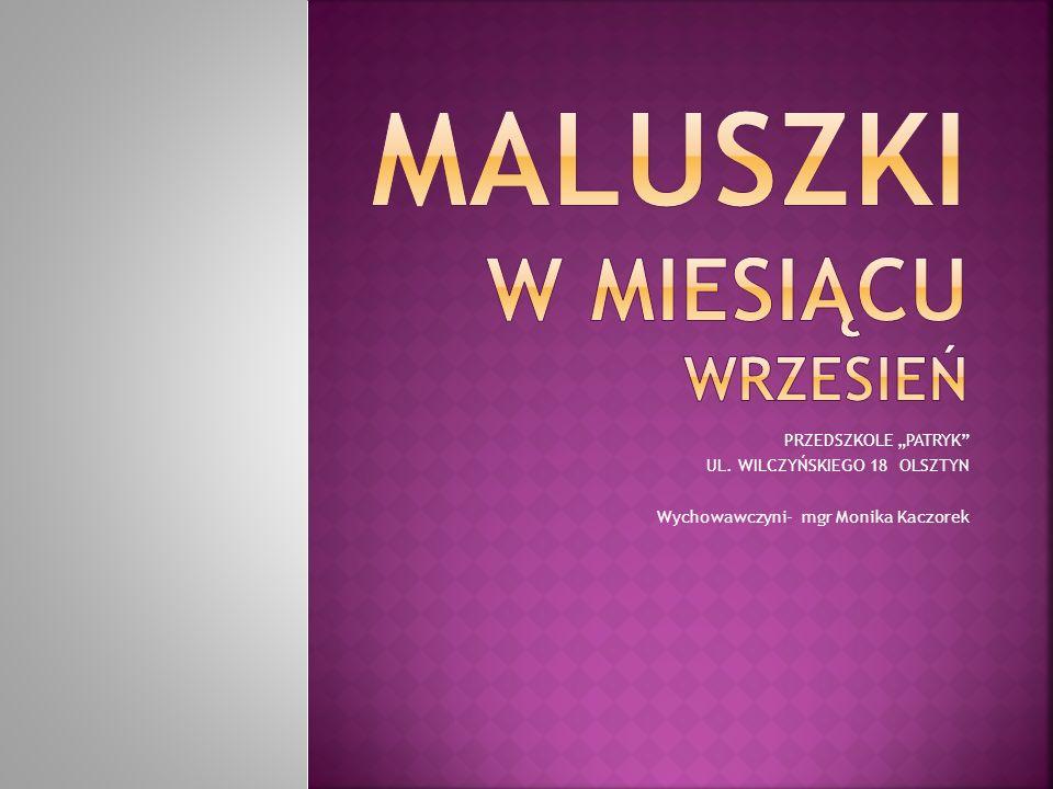 """PRZEDSZKOLE """"PATRYK UL. WILCZYŃSKIEGO 18 OLSZTYN Wychowawczyni- mgr Monika Kaczorek"""