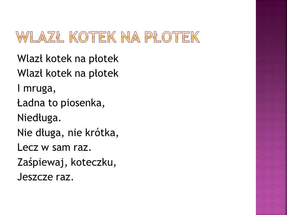 Wlazł kotek na płotek I mruga, Ładna to piosenka, Niedługa.