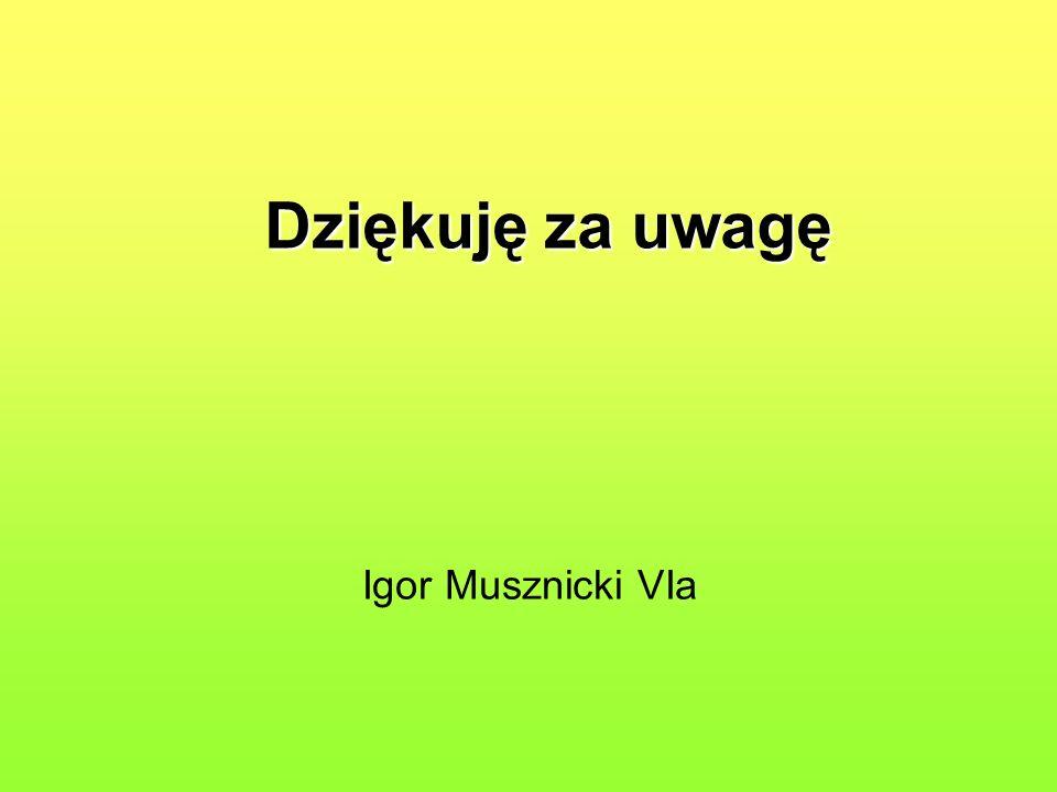 Dziękuję za uwagę Igor Musznicki VIa