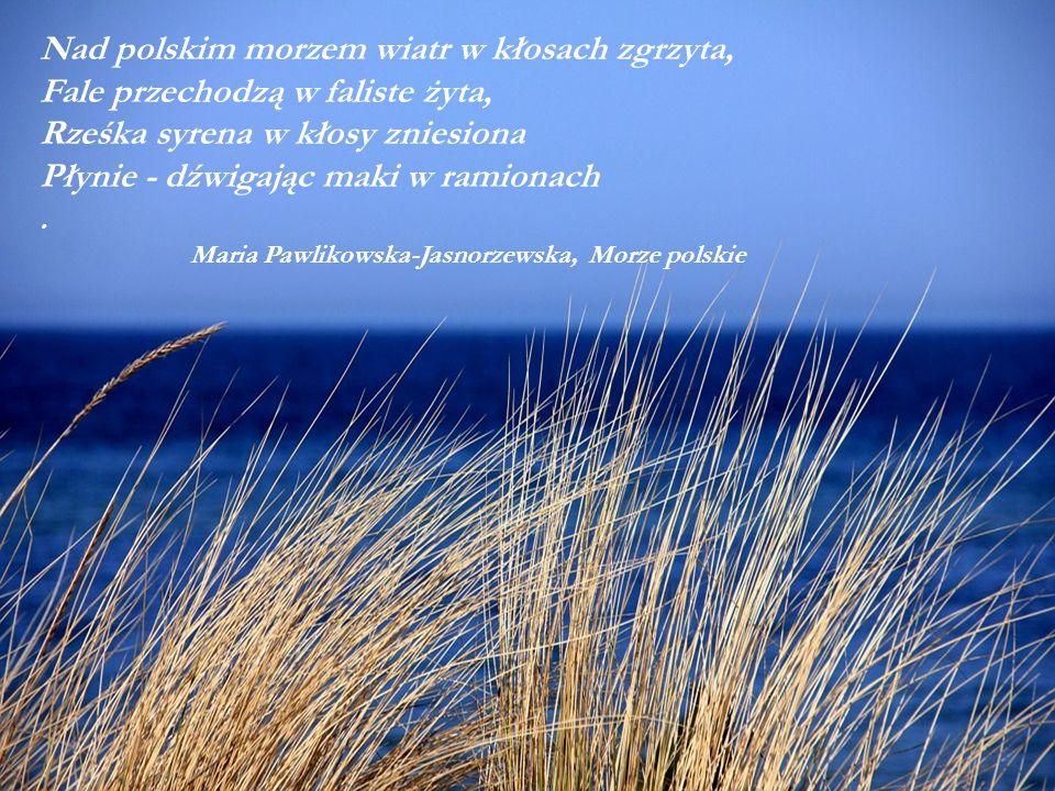 Nad polskim morzem wiatr w kłosach zgrzyta, Fale przechodzą w faliste żyta, Rześka syrena w kłosy zniesiona Płynie - dźwigając maki w ramionach.