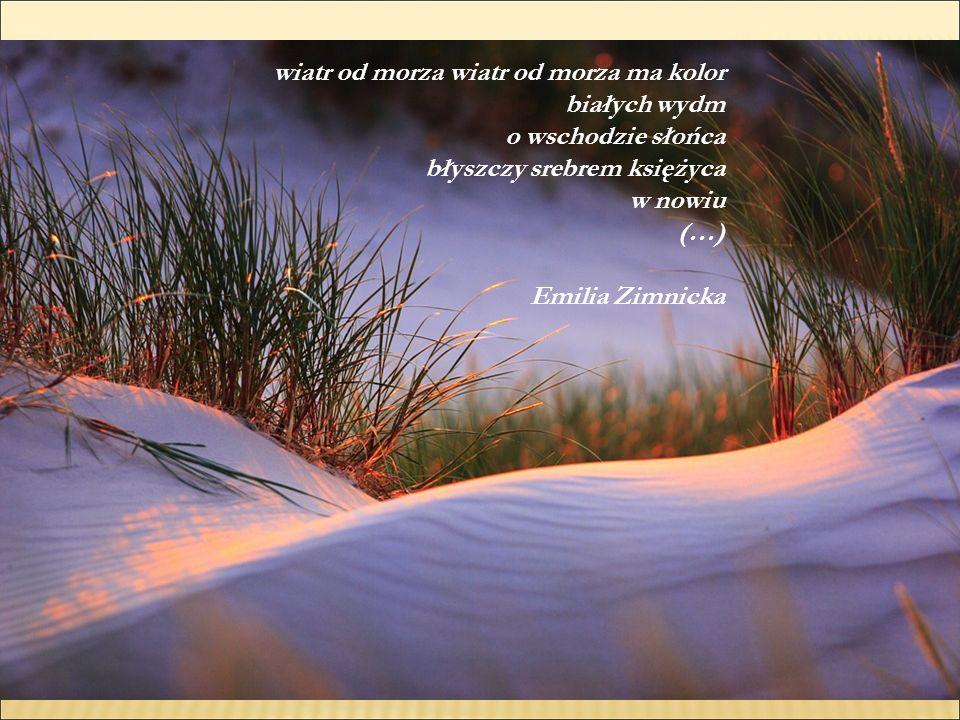 wiatr od morza wiatr od morza ma kolor białych wydm o wschodzie słońca błyszczy srebrem księżyca w nowiu (…) Emilia Zimnicka