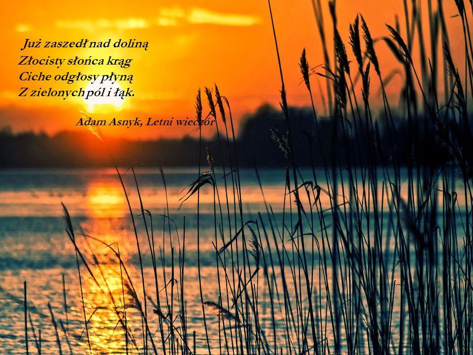 Już zaszedł nad doliną Złocisty słońca krąg Ciche odgłosy płyną Z zielonych pól i łąk. Adam Asnyk, Letni wieczór