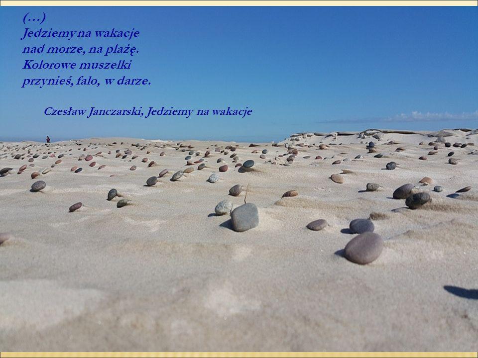 (…) Jedziemy na wakacje nad morze, na plażę. Kolorowe muszelki przynieś, falo, w darze. Czesław Janczarski, Jedziemy na wakacje