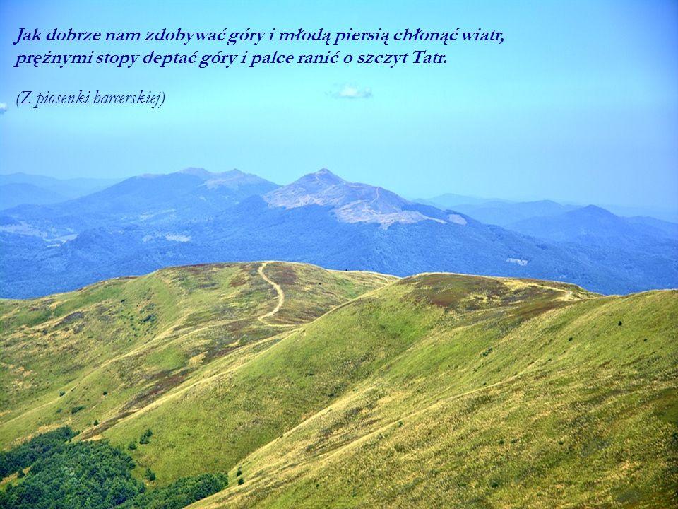 Jak dobrze nam zdobywać góry i młodą piersią chłonąć wiatr, prężnymi stopy deptać góry i palce ranić o szczyt Tatr. (Z piosenki harcerskiej)