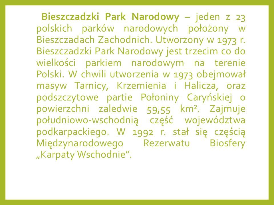 Bieszczadzki Park Narodowy – jeden z 23 polskich parków narodowych położony w Bieszczadach Zachodnich. Utworzony w 1973 r. Bieszczadzki Park Narodowy