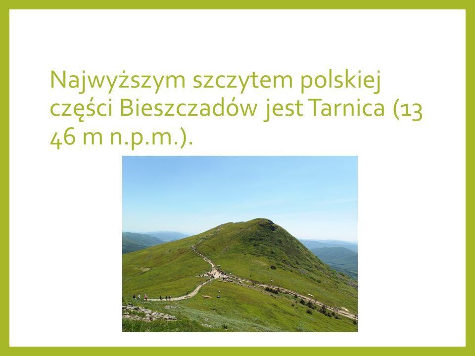 Najwyższym szczytem polskiej części Bieszczadów jest Tarnica (13 46 m n.p.m.).