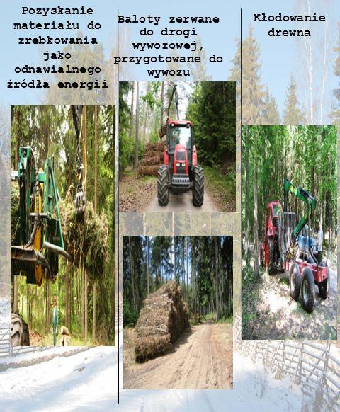 Pozyskanie materiału do zrębkowania jako odnawialnego źródła energii Baloty zerwane do drogi wywozowej, przygotowane do wywozu Kłodowanie drewna