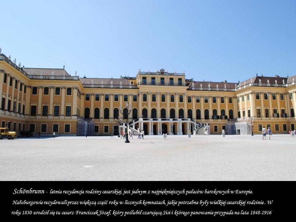 Habsburgowie rezydowali przez większą część roku w licznych komnatach, jakie potrzebne były wielkiej cesarskiej rodzinie.