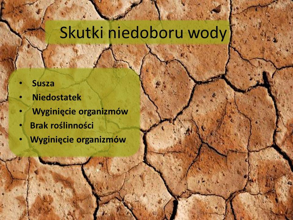 Skutki niedoboru wody Susza Niedostatek Wyginięcie organizmów Brak roślinności Wyginięcie organizmów