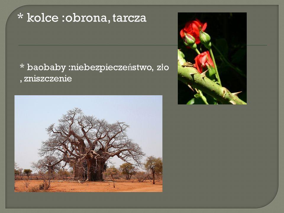 * kolce :obrona, tarcza * baobaby :niebezpiecze ń stwo, z ł o, zniszczenie