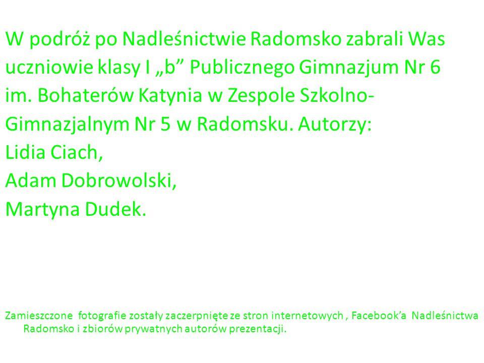 """W podróż po Nadleśnictwie Radomsko zabrali Was uczniowie klasy I """"b Publicznego Gimnazjum Nr 6 im."""