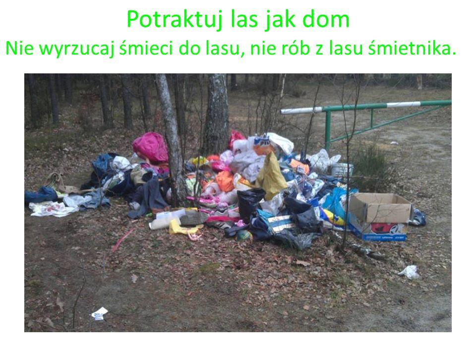 Potraktuj las jak dom Nie wyrzucaj śmieci do lasu, nie rób z lasu śmietnika.