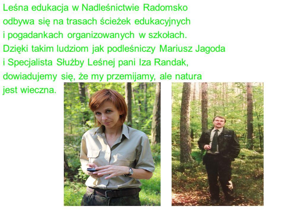 Leśna edukacja w Nadleśnictwie Radomsko odbywa się na trasach ścieżek edukacyjnych i pogadankach organizowanych w szkołach.