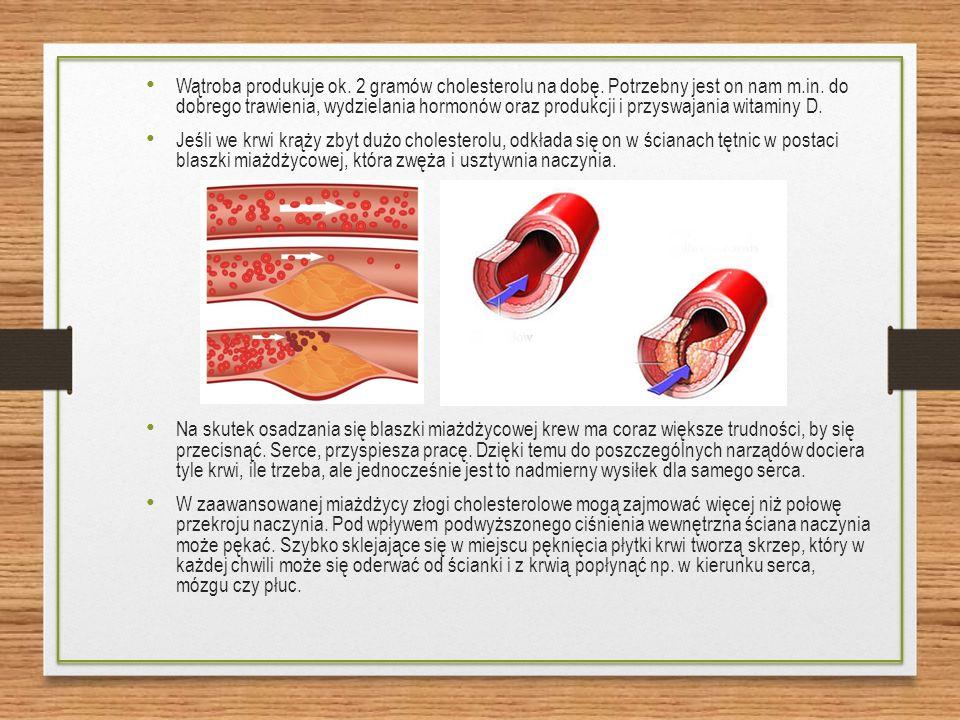 Wątroba produkuje ok. 2 gramów cholesterolu na dobę.