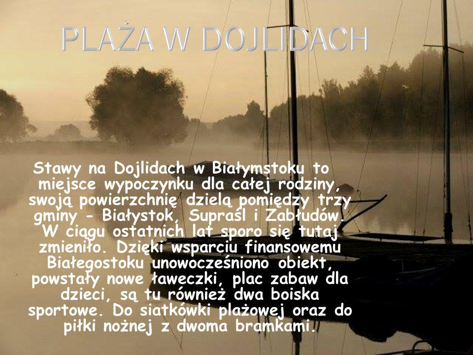 Stawy na Dojlidach w Białymstoku to miejsce wypoczynku dla całej rodziny, swoją powierzchnię dzielą pomiędzy trzy gminy - Białystok, Supraśl i Zabłudó