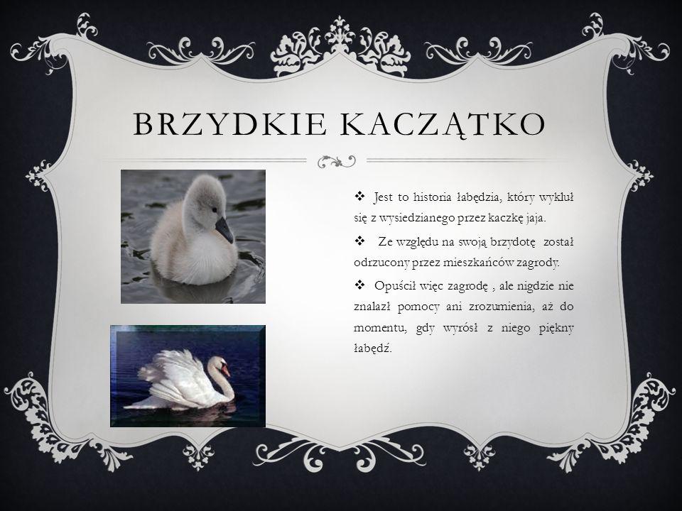 BRZYDKIE KACZĄTKO  Jest to historia łabędzia, który wykluł się z wysiedzianego przez kaczkę jaja.  Ze względu na swoją brzydotę został odrzucony prz