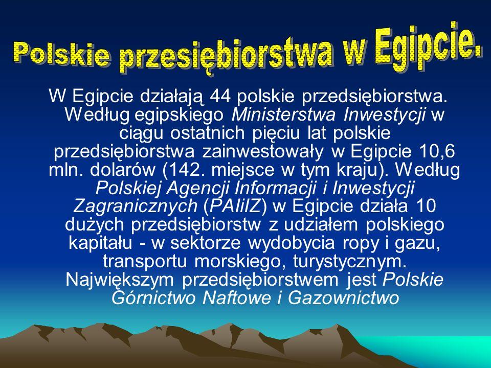 W Egipcie działają 44 polskie przedsiębiorstwa.