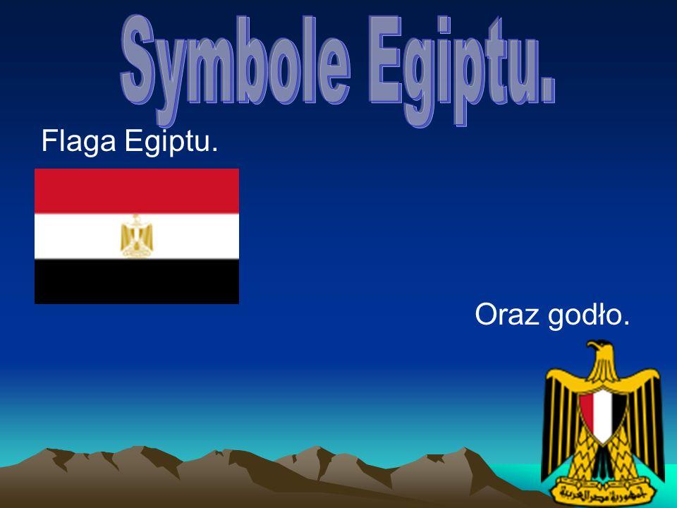 Flaga Egiptu. Oraz godło.