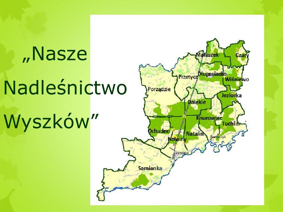 """""""Nasze Nadleśnictwo Wyszków"""""""