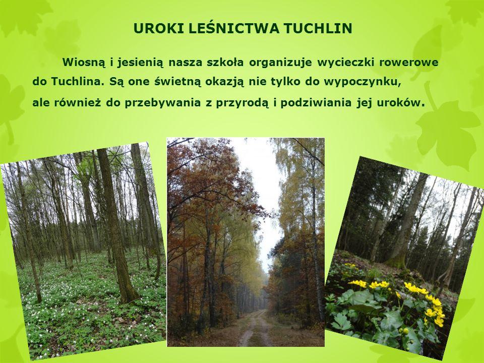 UROKI LEŚNICTWA TUCHLIN Wiosną i jesienią nasza szkoła organizuje wycieczki rowerowe do Tuchlina.