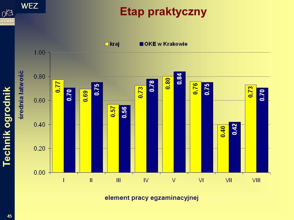 WEZ 45 średnia łatwość element pracy egzaminacyjnej Etap praktyczny Technik ogrodnik