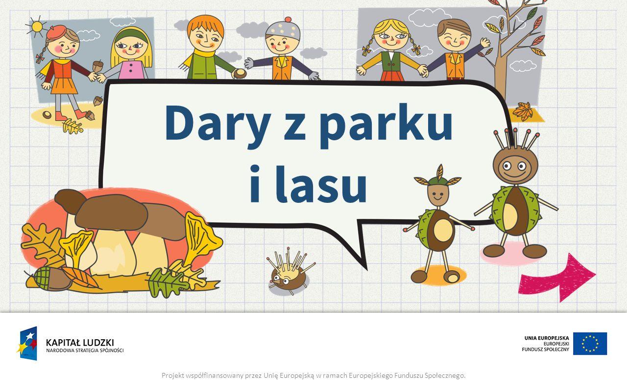 Dary z parku i lasu Projekt współfinansowany przez Unię Europejską w ramach Europejskiego Funduszu Społecznego.