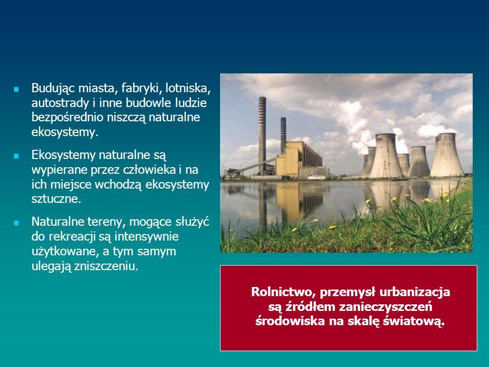 Budując miasta, fabryki, lotniska, autostrady i inne budowle ludzie bezpośrednio niszczą naturalne ekosystemy.