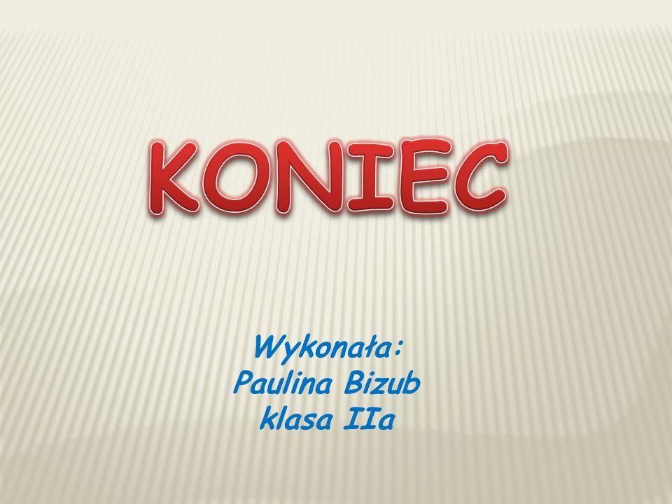 Wykonała: Paulina Bizub klasa IIa