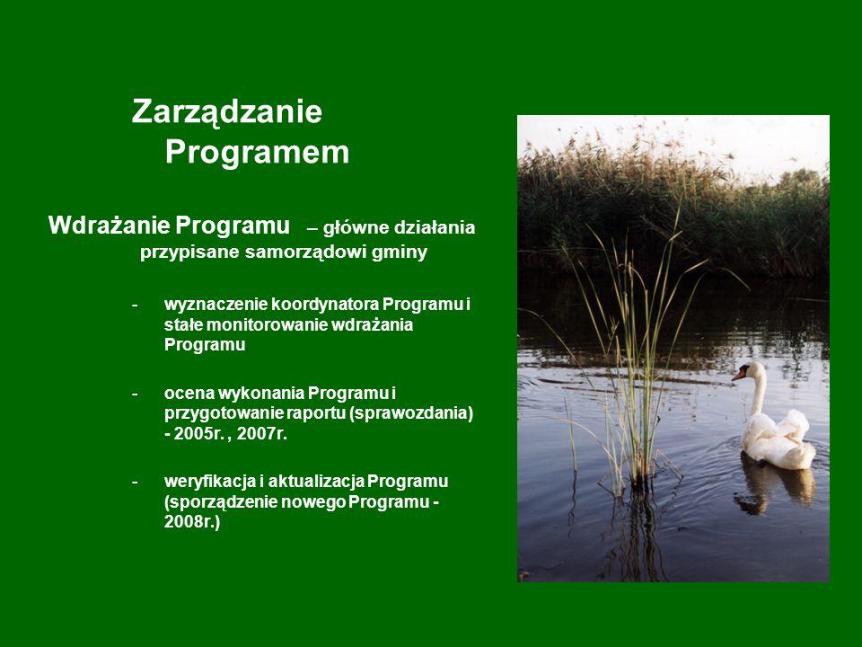 Szacunkowe, sumaryczne koszty realizacji Programu na lata 2004-2007