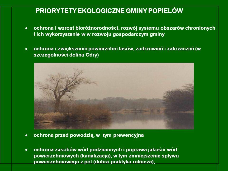 PRIORYTETY EKOLOGICZNE GMINY POPIELÓW  ochrona i wzrost bioróżnorodności, rozwój systemu obszarów chronionych i ich wykorzystanie w w rozwoju gospodarczym gminy  ochrona i zwiększenie powierzchni lasów, zadrzewień i zakrzaczeń (w szczególności dolina Odry)  ochrona przed powodzią, w tym prewencyjna  ochrona zasobów wód podziemnych i poprawa jakości wód powierzchniowych (kanalizacja), w tym zmniejszenie spływu powierzchniowego z pól (dobra praktyka rolnicza),