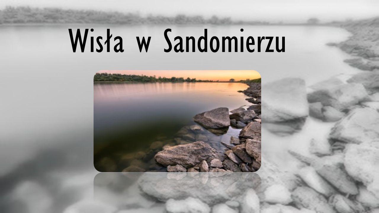 Wisła w Sandomierzu