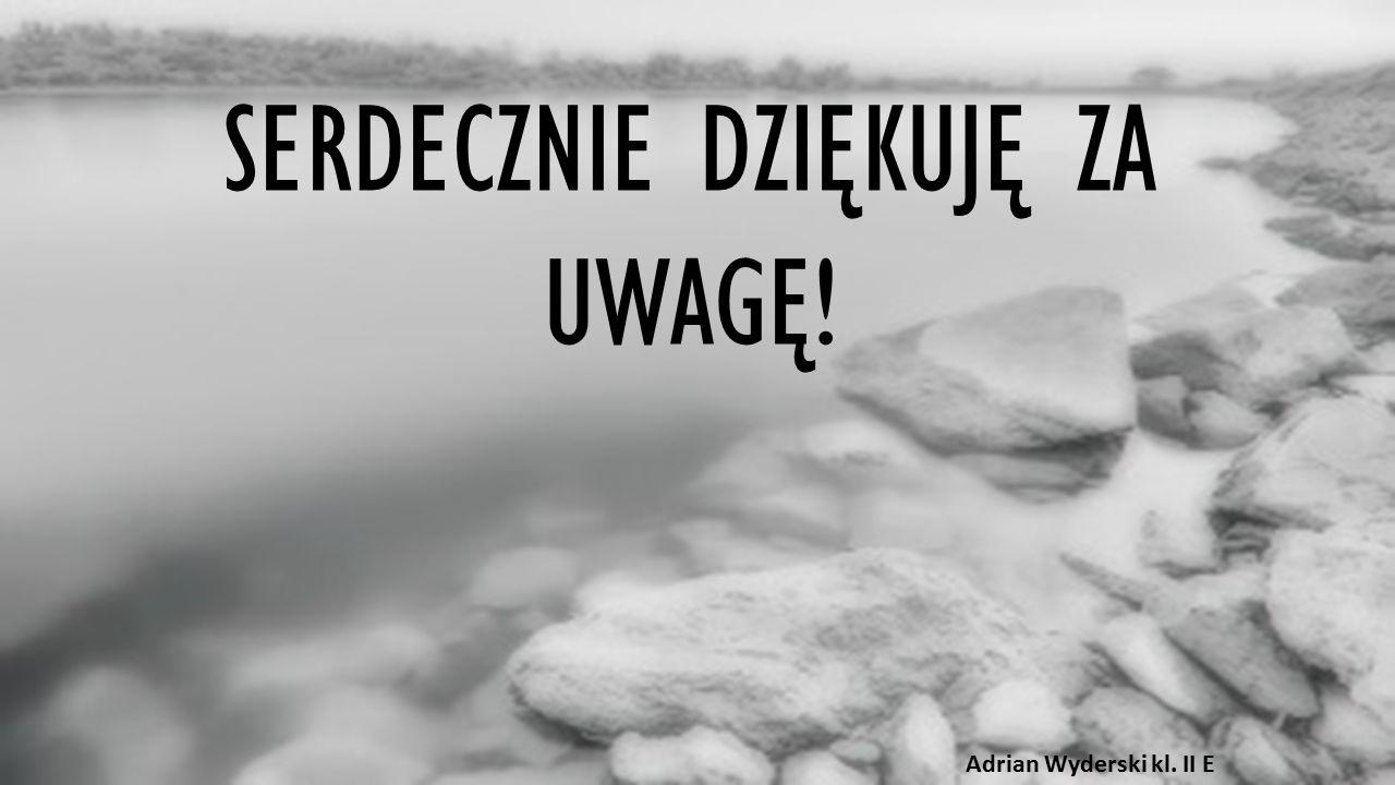 SERDECZNIE DZIĘKUJĘ ZA UWAGĘ! Adrian Wyderski kl. II E