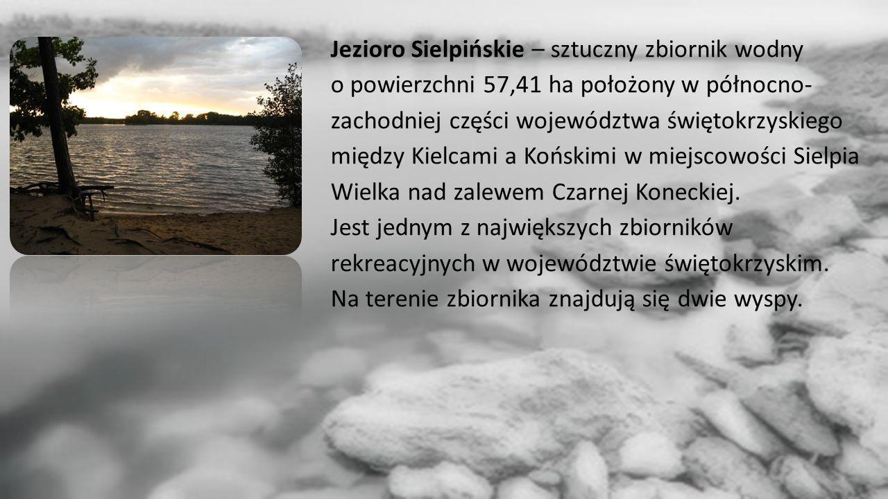 Jezioro Sielpińskie – sztuczny zbiornik wodny o powierzchni 57,41 ha położony w północno- zachodniej części województwa świętokrzyskiego między Kielcami a Końskimi w miejscowości Sielpia Wielka nad zalewem Czarnej Koneckiej.