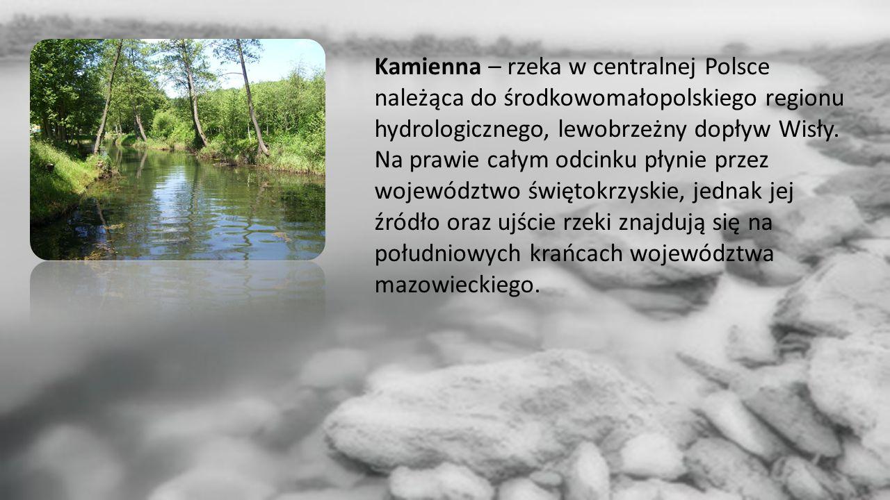 Kamienna – rzeka w centralnej Polsce należąca do środkowomałopolskiego regionu hydrologicznego, lewobrzeżny dopływ Wisły.