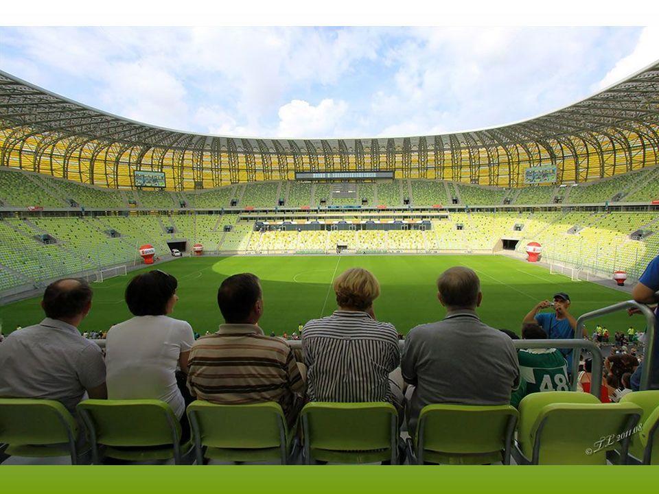 Fasada stadionu pokryta jest 18.000 płytek z poliwęglanu w 6 odcieniach, o łącznej powierzchni 6,5 hektara.
