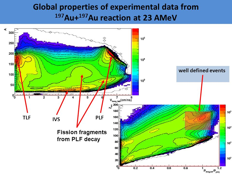 TLF well defined events PLF IVS Fission fragments from PLF decay Global properties of experimental data from 197 Au+ 197 Au reaction at 23 AMeV